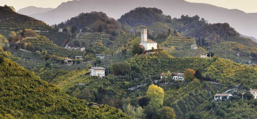 The hills of Prosecco