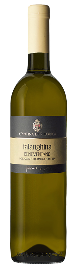 falanghina.jpg_product_product