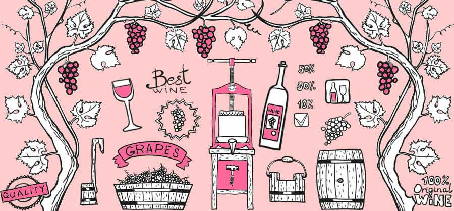 Wine tips: what makes a rosé a true rosé