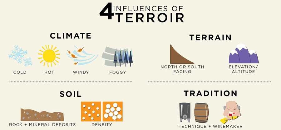 What do they mean by terroir